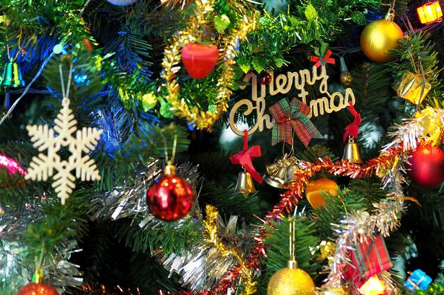 christmas-tree.jpeg