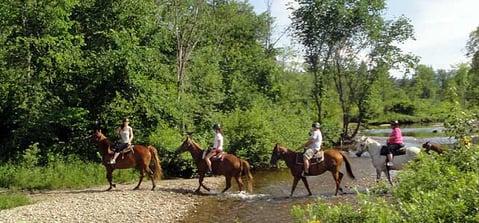 franconia-notch-stables.jpg