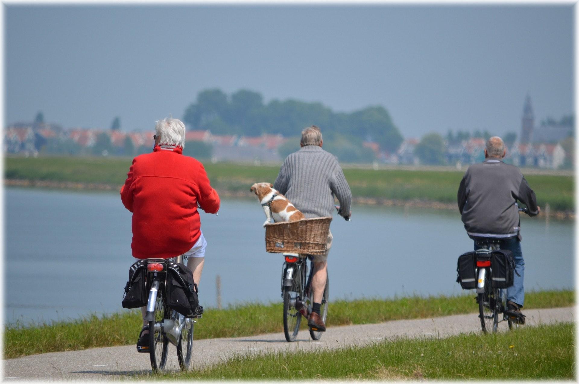active-bikes-cyclist-264073
