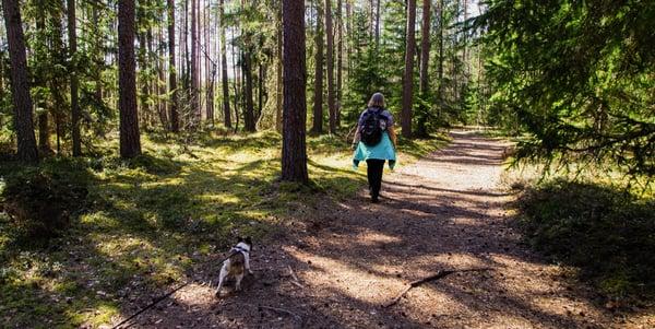 hiking-trails
